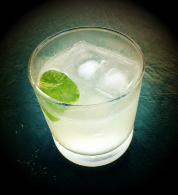 gin-and-tonic-507439_1280