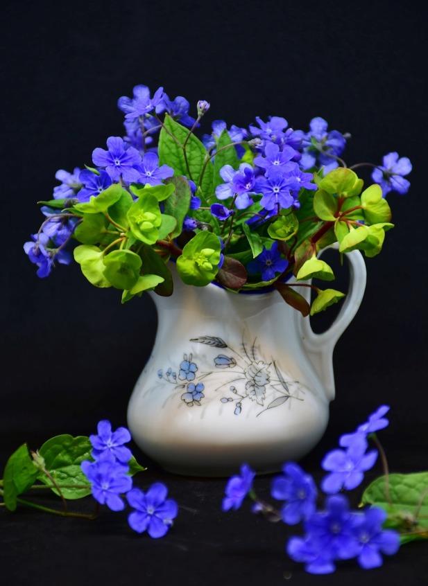 flower-3325740_1280