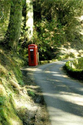 rural-road (002)
