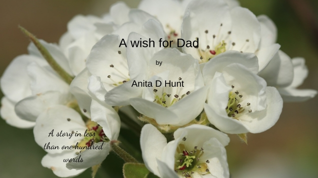 A wish for Dad (2)
