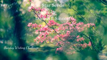 Star Seeds by Dorian J. Sinnott